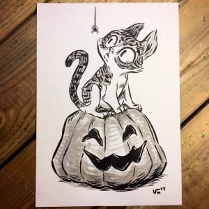 Kitten on a Pumpkin